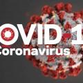 COVID-19 Fair News!