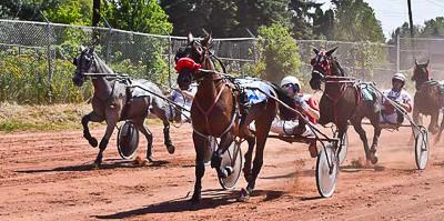 www.gogebiccountyfair.com_grand stand_horse race